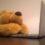 teddy chat